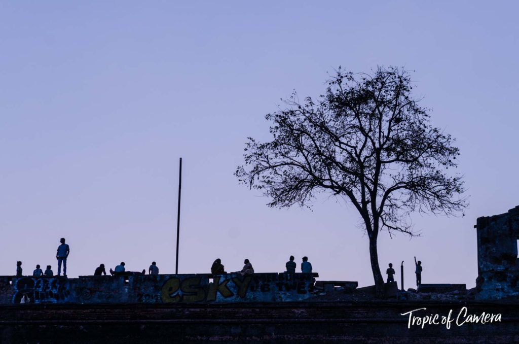 People silhouetted next to a tree in Varanasi at twilight.