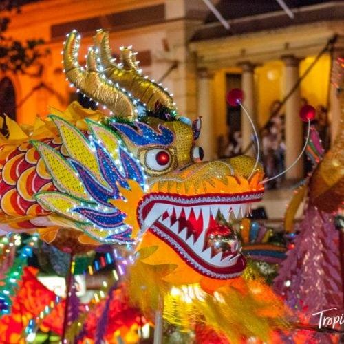Dragon dancers at Chinese Lunar New Year Celebration, Sydney