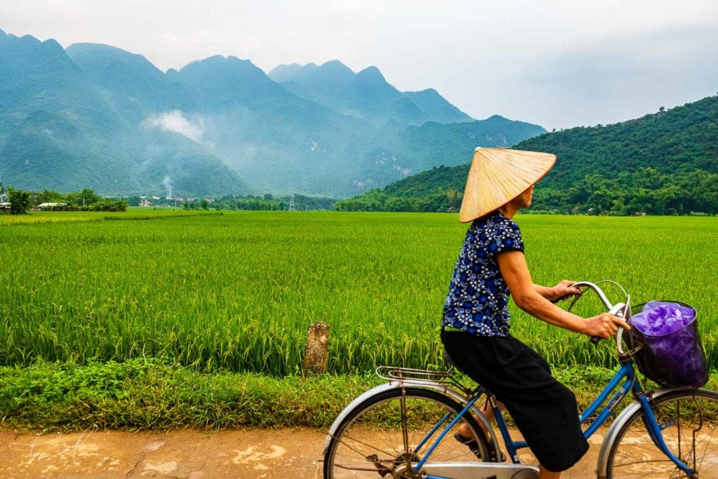 Woman cycling past in conical hat, Ninh Binh, Vietnam