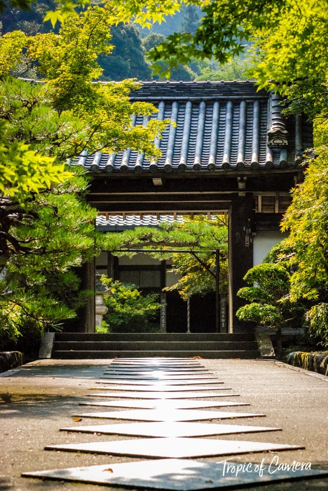 Path leading towards a temple in Kyoto, Japan
