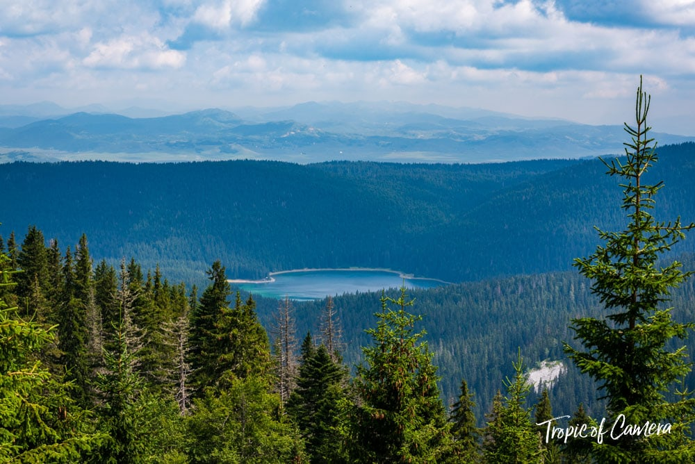 The Black Lake through pine trees in Durmitor National Park