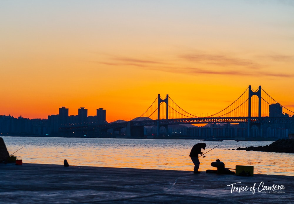 Man fishing at Gwangan Bridge at sunset, Busan, South Korea