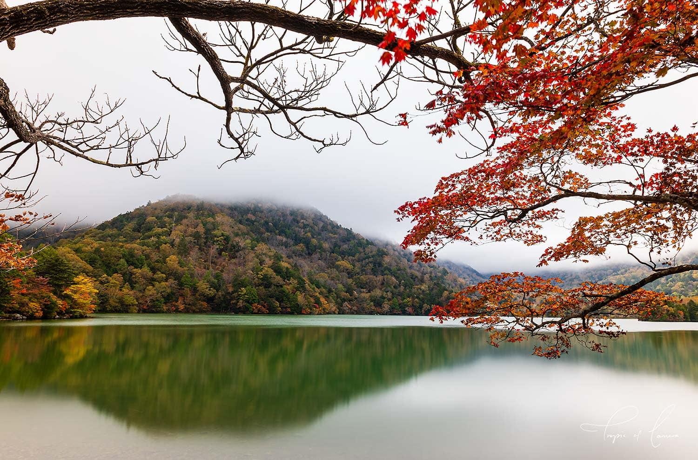 Red leaves around Lake Yunoko, Nikko, Japan