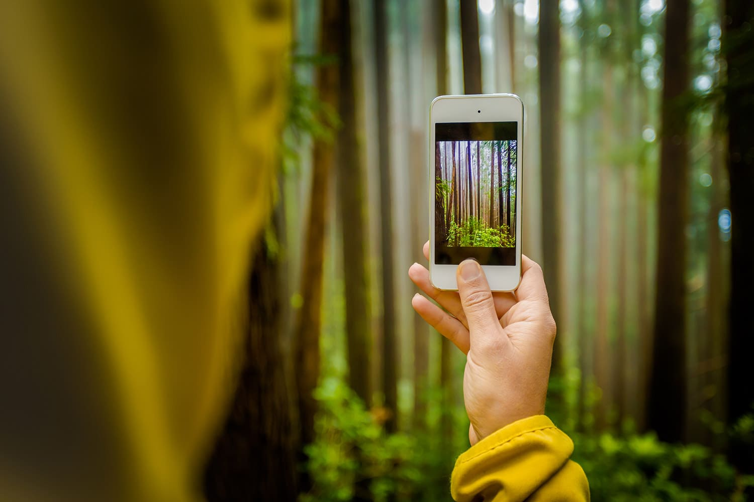 Woman taking a nature photo with her phone