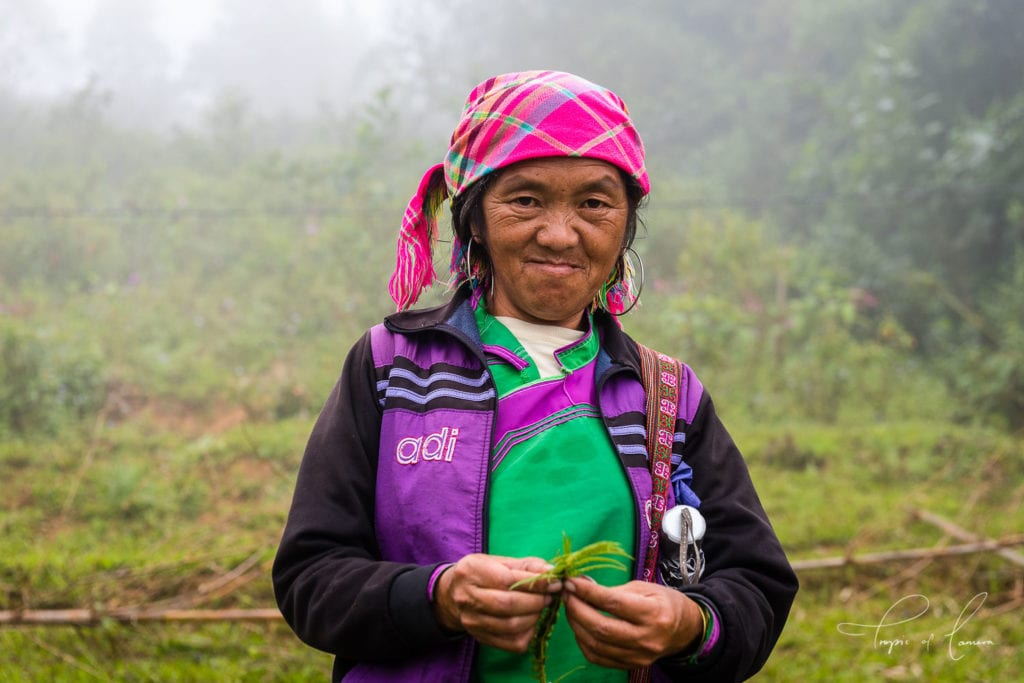 Traditional hmong woman in SaPa, Vietnam
